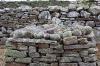 Clocha Breacha (Cursing Stones)