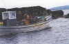 Islander Christy Heraughty fishing lobsters