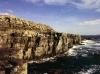 Trahanareear cliffs